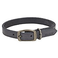 """Coastal Pet Products Circle T Rustic Leather Town Dog Collar, 5/8"""" X 16"""", Slate Grey"""