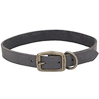 """Coastal Pet Products Circle T Rustic Leather Town Dog Collar, 1"""" X 22"""", Slate Grey"""