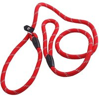 Yansanido Adjustable Nylon Leash Rope 1.2m(47inch) MINI Pet Dog Loop Slip Lead Training Leash Lead Collar (Red)