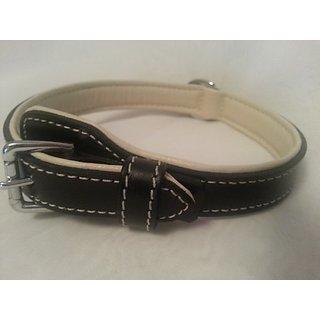 Aspen Pet Products Leather Petmate Collar, 3/4