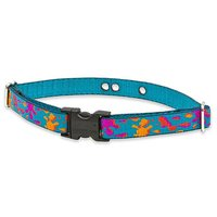 Lupine 3/4-Inch Wet Paint 19-31-Inch Containment Collar Strap For Large Dogs