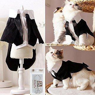 iPet Handsome Prince Cat Bridegroom Wedding Tuxedo Faux Twinset Design Small Boy Dog Formal Attire Doggy Party Wear Pupp