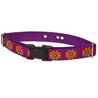 LupinePet 1-Inch Flower Box Containment Collar Strap For Large Dogs, 19 To 31-Inch