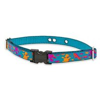 Lupine 3/4-Inch Wet Paint 12-17-Inch Containment Collar Strap For Small To Medium Dogs