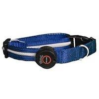 Aviditi BC403-M LED Lighted Dog Collar, Blue With White LED Lights, Medium