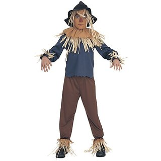 Wizard of Oz Childs Scarecrow Costume, Small