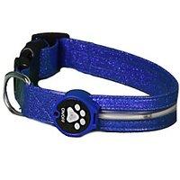 Aviditi BL601-L LED Lighted Dog Collar, Blue With Blue LED Lights, Large