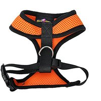 All4pet DH-V30O Comfort Control Dog And Cat Easy Walking Harness Padded Vest, Small, Orange