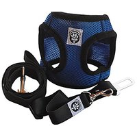 Mesh Dog Harness And Leash Set With Adjustable Velcro Collar For No Pull And Easy Walking - Small Blue
