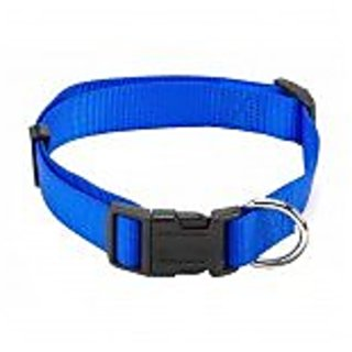 Adjustable Dog Collar Royal Blue - Large (Pack of 2)