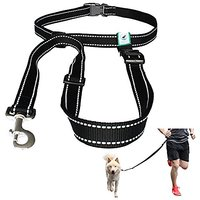 Caldwells Pet Supply Co. Hands Free Reflective Running, Walking, Hiking And Jogging Dog Leash For Large And Small Dogs