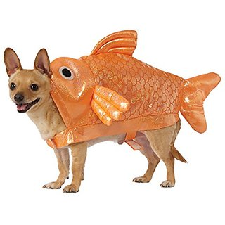 Gold Fish Dog Costume, Medium