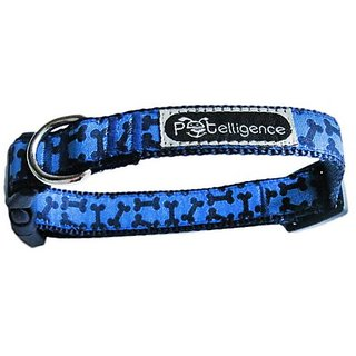 Petelligence Petellus Dog Collar, X-Small, Bone, Blue