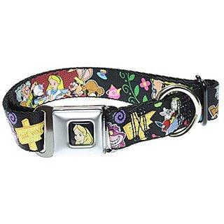 Buckle Down Dog Collar Alices Encounters in Wonderland -Medium 11-17