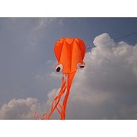 Octopus Large Flyer Kite For Kids Beautiful Orange Colorful Software 31 Inches Wide With Long Colorful Tail 157 Inches L