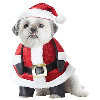 California Costume Collections Santa Pup Dog Costume, Medium