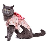 SMALLLEE_LUCKY_STORE Small Cat Dog Costume Kimono Floral Dog Coat Pattern Spring, Small, Pink