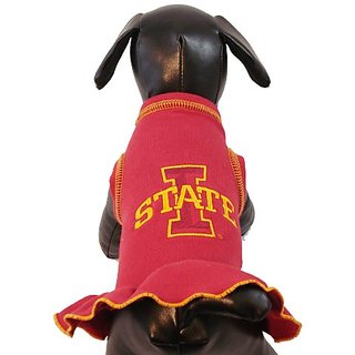 NCAA Iowa State Cyclones Cheerleader Dog Dress (Team Color, Small)