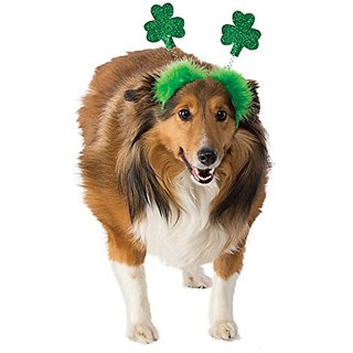 St. Patricks Day Shamrock Boppers Dog Costume, Medium/Large