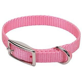 Coastal Nylon Collar 12