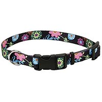 """Coastal Pet Products 06421 WDF14 Adjustable Dog Collar, 5/8"""" X 10""""-14"""""""