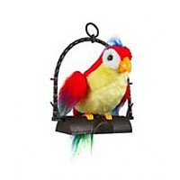 Imported Talk Back Or Voice Repeating Parrot