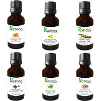 Combo Set Of Sweet Orange Oil, Ylang-Ylang Oil, Clary Sage Oil, Lavender Oil, Jojoba Oil And Sesame Oil (Each 15ML)