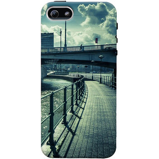 ColourCrust Apple iPhone 5 Mobile Phone Back Cover With D290 - Durable Matte Finish Hard Plastic Slim Case