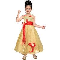 Aarika Girls Self Design Net Fabric Party Wear Ball Gown