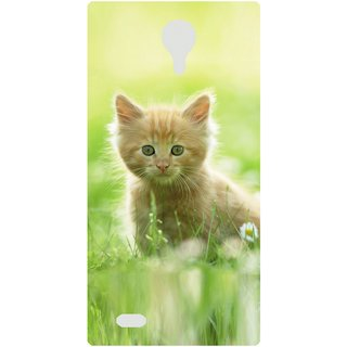 Amagav Back Case Cover for Lava A71 671LavaA71