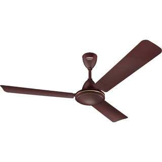 Eveready 1200 mm VANILO 70W Ceiling Fan Brown