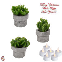 Sweet Little Thorn Plant Shape Decorative Candles With Stand (Set Of 3)