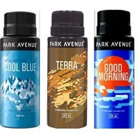 Park Avenue Deo Gift Pack Of 3 Awesome Assorted Flavours - Free Shipping