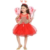 Aarika Girls BirthdayChristmas Special Premium Net Fabric Frock With Butterfly wings