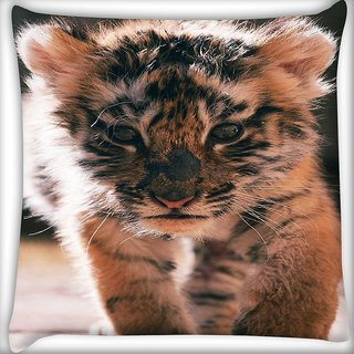 Snoogg baby tiger Digitally Printed Cushion Cover Pillow 16 x 16 Inch