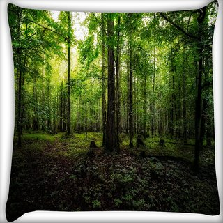 Snoogg Green Forest Digitally Printed Cushion Cover Pillow 20 x 20 Inch