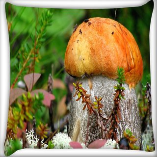 Snoogg Orange Mushroom Digitally Printed Cushion Cover Pillow 20 x 20 Inch