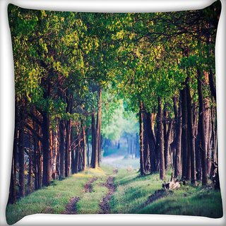 Snoogg Pathway In Forest Digitally Printed Cushion Cover Pillow 16 x 16 Inch