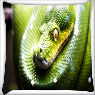 Snoogg Green Snake Digitally Printed Cushion Cover Pillow 16 x 16 Inch