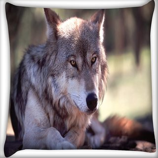 Snoogg Wolfy Dog Digitally Printed Cushion Cover Pillow 16 x 16 Inch