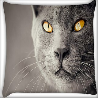 Snoogg Black Cat Digitally Printed Cushion Cover Pillow 16 x 16 Inch