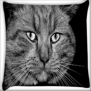 Snoogg House Cat Digitally Printed Cushion Cover Pillow 16 x 16 Inch