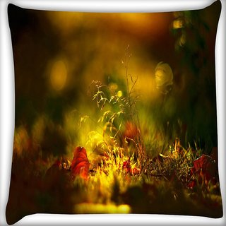 Snoogg Morning Sunlight Digitally Printed Cushion Cover Pillow 16 x 16 Inch