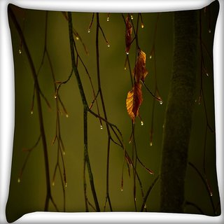 Snoogg Dew Drops In Trees Digitally Printed Cushion Cover Pillow 16 x 16 Inch