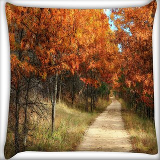 Snoogg Small Path Through The Forest Digitally Printed Cushion Cover Pillow 16 x 16 Inch