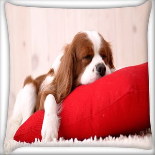 Snoogg Dog Sleeping In A Pillow Digitally Printed Cushion Cover Pillow 16 x 16 Inch