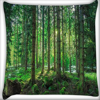 Snoogg Tall Tress With No Leaves Digitally Printed Cushion Cover Pillow 16 x 16 Inch