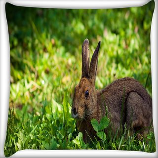 Snoogg Rabbit Sitting Digitally Printed Cushion Cover Pillow 16 x 16 Inch