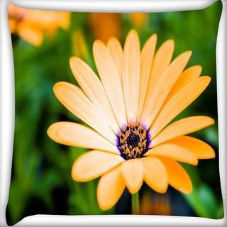 Snoogg Blossom Flower Digitally Printed Cushion Cover Pillow 16 x 16 Inch