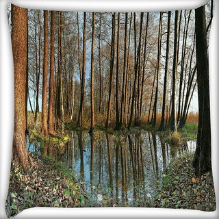 Snoogg Small Pond In Forest Digitally Printed Cushion Cover Pillow 16 x 16 Inch
